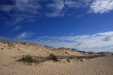 Free Dune Royalty Free Stock Photo - 4213275