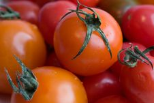 Free Cherry Tomatoes Royalty Free Stock Image - 4215676