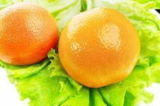 Free Mandarin Royalty Free Stock Image - 4216736