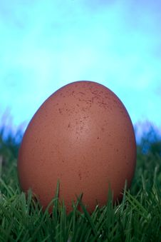 Free Brown Egg Royalty Free Stock Photo - 4217915