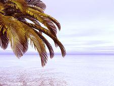 Free Beautiful Landscape Stock Images - 4218944