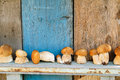 Free Fresh Mushrooms Cepes Royalty Free Stock Photos - 42167888