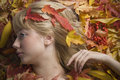 Free Autumn Leaves Girl Royalty Free Stock Photography - 4228637