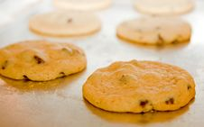 Free Fresh From The Oven Stock Image - 4220901