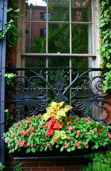 Free Beacon Hill, Boston Royalty Free Stock Photography - 4221007