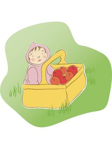 Free Baby In Basket Of Apples Royalty Free Stock Photos - 4221638