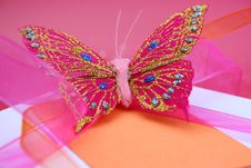 Free Butterfly Gift Stock Photos - 4221893