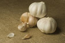 Free Garlic Royalty Free Stock Image - 4224976