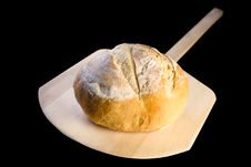Free Loaf Of Crusty Italian Bread On Peel Stock Photography - 4225452