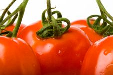 Free Closeup Red Tomato Royalty Free Stock Photography - 4226567
