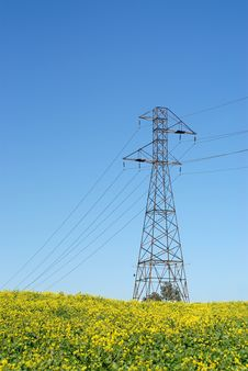 Free Vertical Shot Of A Power Line Royalty Free Stock Photos - 4227258
