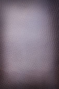 Free Dark Spotted Leather Royalty Free Stock Images - 4228669