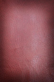Free Burgundy Spotted Leather Stock Images - 4228954