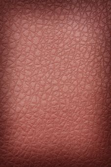 Free Rust Crackled Leather Royalty Free Stock Photography - 4229007