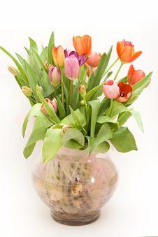 Free Bouquet Of Fresh Tulips In Vase Stock Photos - 4229063