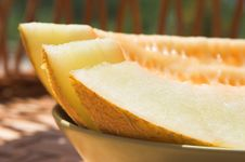 Free Melon Slices Stock Images - 4229124