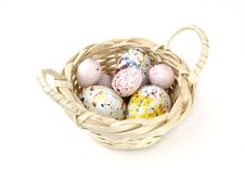 Free Eggs Stock Images - 4229224