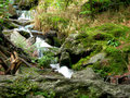 Free Mountain Brook Stock Photography - 4239752