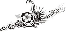 Free Black & White Floral Designs Royalty Free Stock Image - 4233796