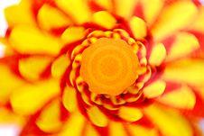 Free Revolving Pinwheel Stock Image - 4237451