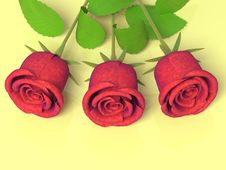 Free Roses For Great Celebrations Stock Image - 4237641