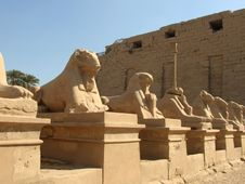 Free Statue Of Rams Guarding Included In Karnak Royalty Free Stock Photography - 4238007