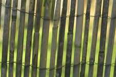 Free Bamboo Fence Royalty Free Stock Images - 4238509