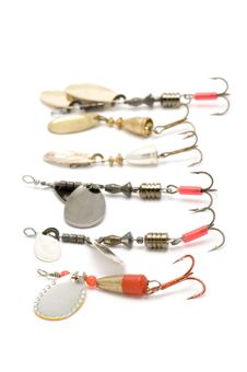 Free Set Of Minnow On White Royalty Free Stock Photo - 4239875