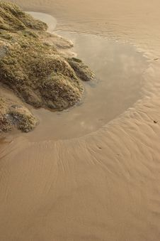Free Low Tide Royalty Free Stock Photo - 4242255