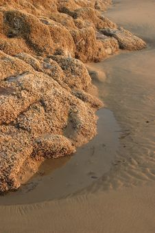 Free Low Tide Stock Images - 4242304