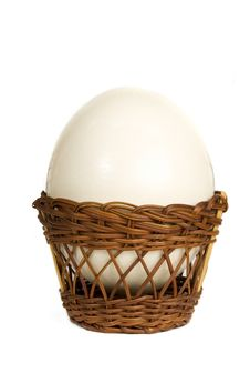 Free Ostrich Egg Stock Image - 4242721