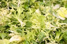 Free Lettuce Leaves - Vegetarian Background Stock Images - 4246914