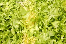 Free Lettuce Leaves - Vegetarian Background Stock Images - 4246974