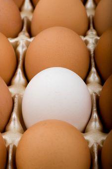 Free Oddball Egg Stock Photo - 4248240