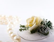 Free Pearl Necklace Royalty Free Stock Photos - 4248358
