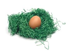 Free Chicken Egg In A Nest Royalty Free Stock Photo - 4249035