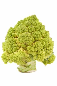 Broccoli As A Tree Stock Images