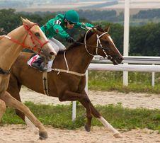 Free Horse Racing Stock Photos - 42445943