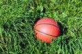 Free Basketball On The Grass Stock Photo - 4257560
