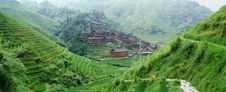 Free Terraced Field And Village Stock Image - 4252371