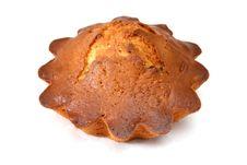 Free Fruitcake Stock Image - 4252381