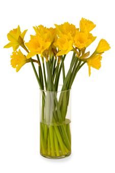 Free Vase With Daffodils Royalty Free Stock Photo - 4252755