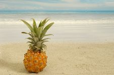 Free Pineapple And Exotic Beach Stock Photo - 4252940