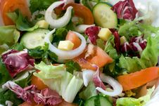 Free Fresh Salad Mix Royalty Free Stock Images - 4253289