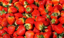 Free Strawberry Royalty Free Stock Images - 4253539