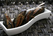 Free Mussels Stock Images - 4255714