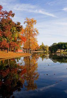 Free Autumn In California Stock Images - 4256774
