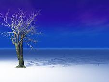 Tree On Horizon Stock Images
