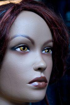 Free Female Model Portrait Doll Stock Image - 4259131