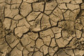 Free Dried Land Stock Photography - 4264502